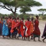Cultuur Dansende Masai