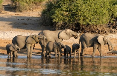 Namibië, Chobe Rivier en Victoria Watervallen per huurauto