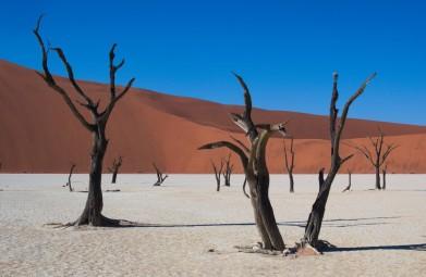 Hoogtepunten van Namibië per Huurauto