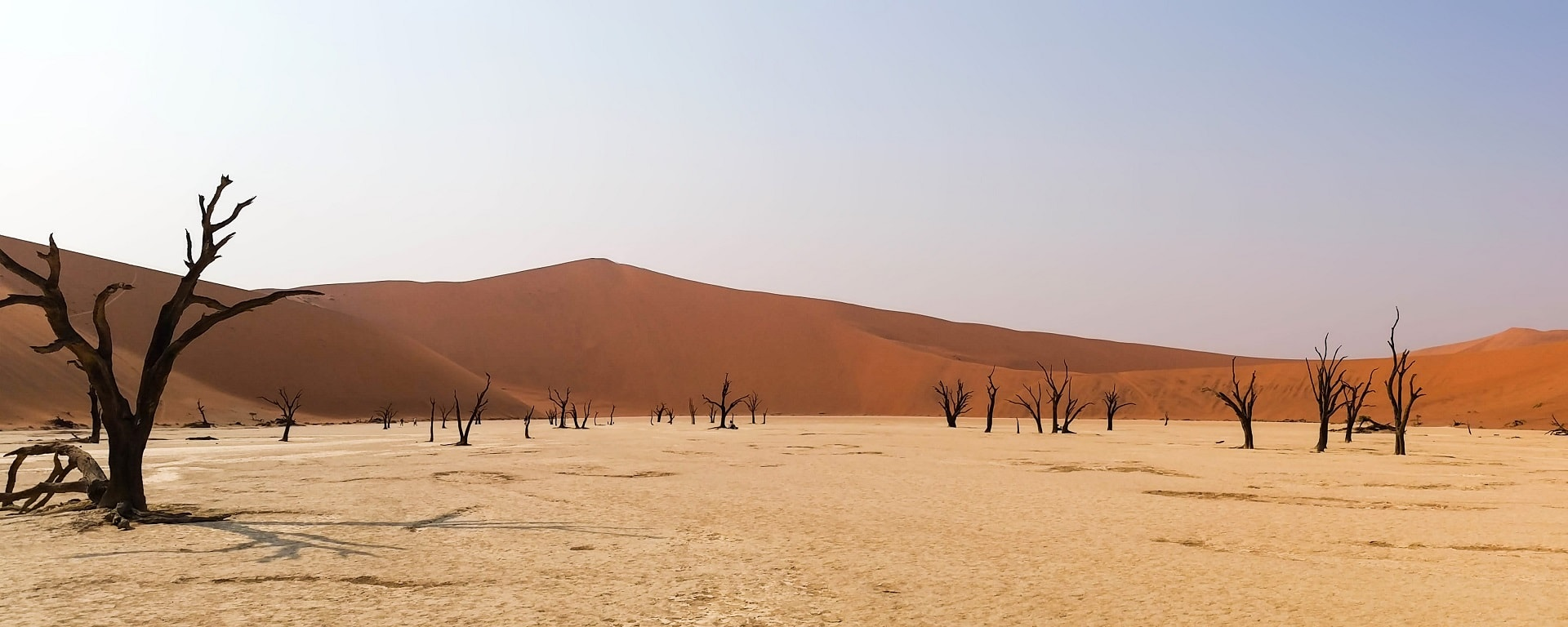 8_Namibie-Deadvlei-Header-min
