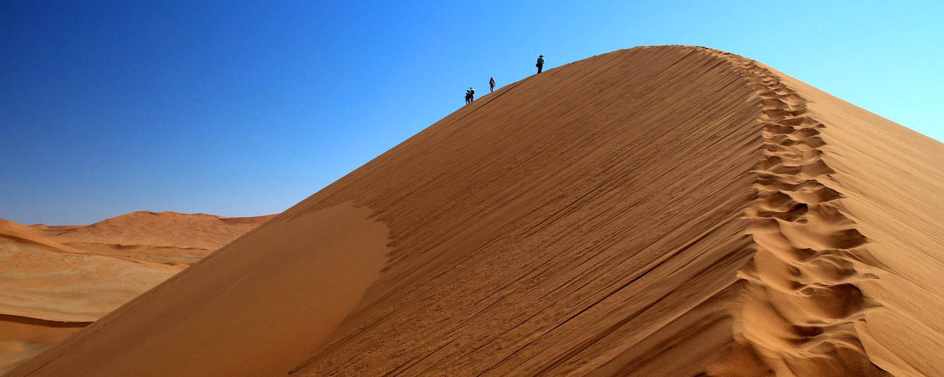 Namibië Woestijn Safari