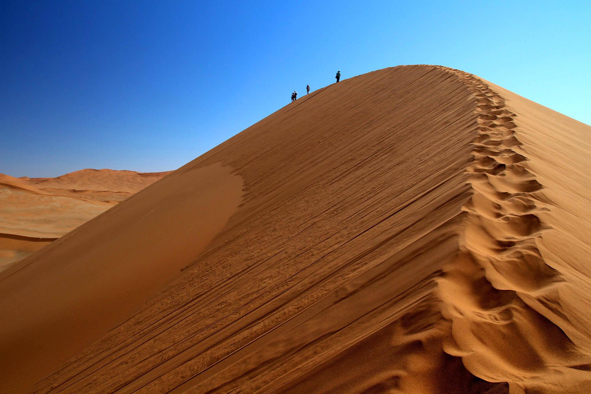 Namibie Woestijn Safari